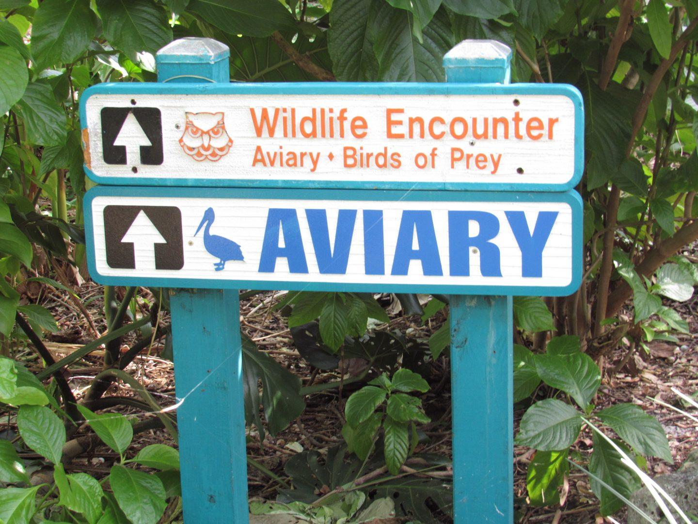 Flamingo Gardens Un Refugio De Vida Silvestre En Florida